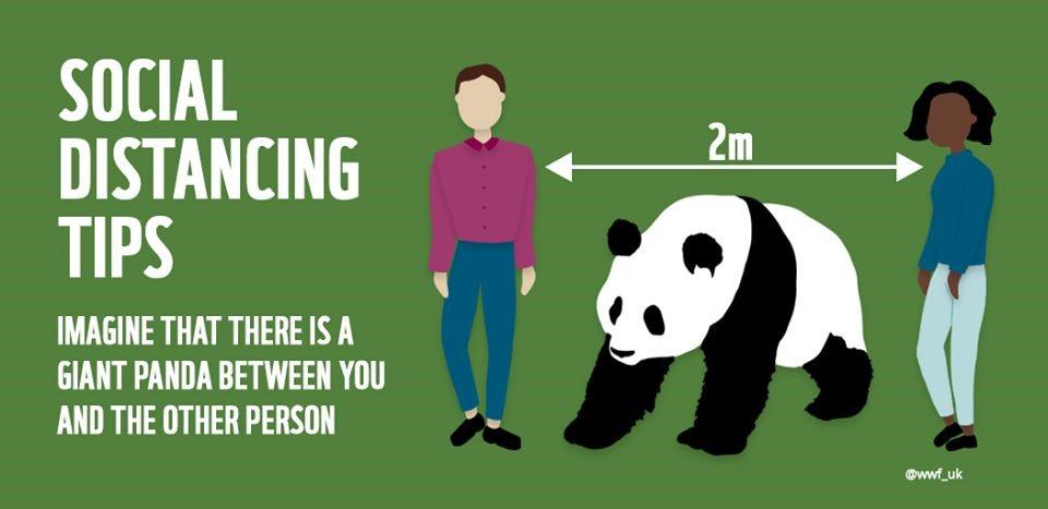 panda distance